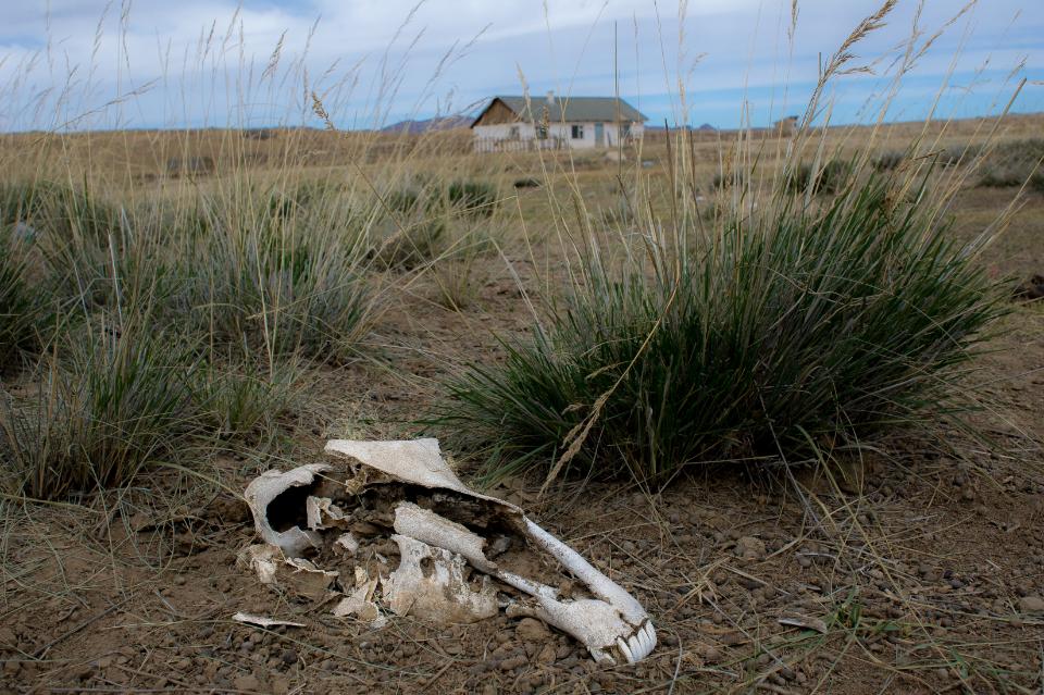 A Mongolian rural landscape